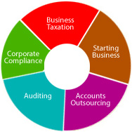 Indian Chartered Accountants Firm